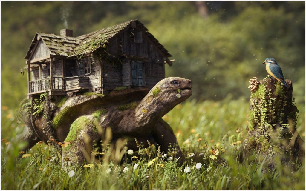 Giant-Turtle-House-Fantasy-giant-turtle-house-fantasy-1080p-giant-turtle-hous-wallpaper-wpc5805382