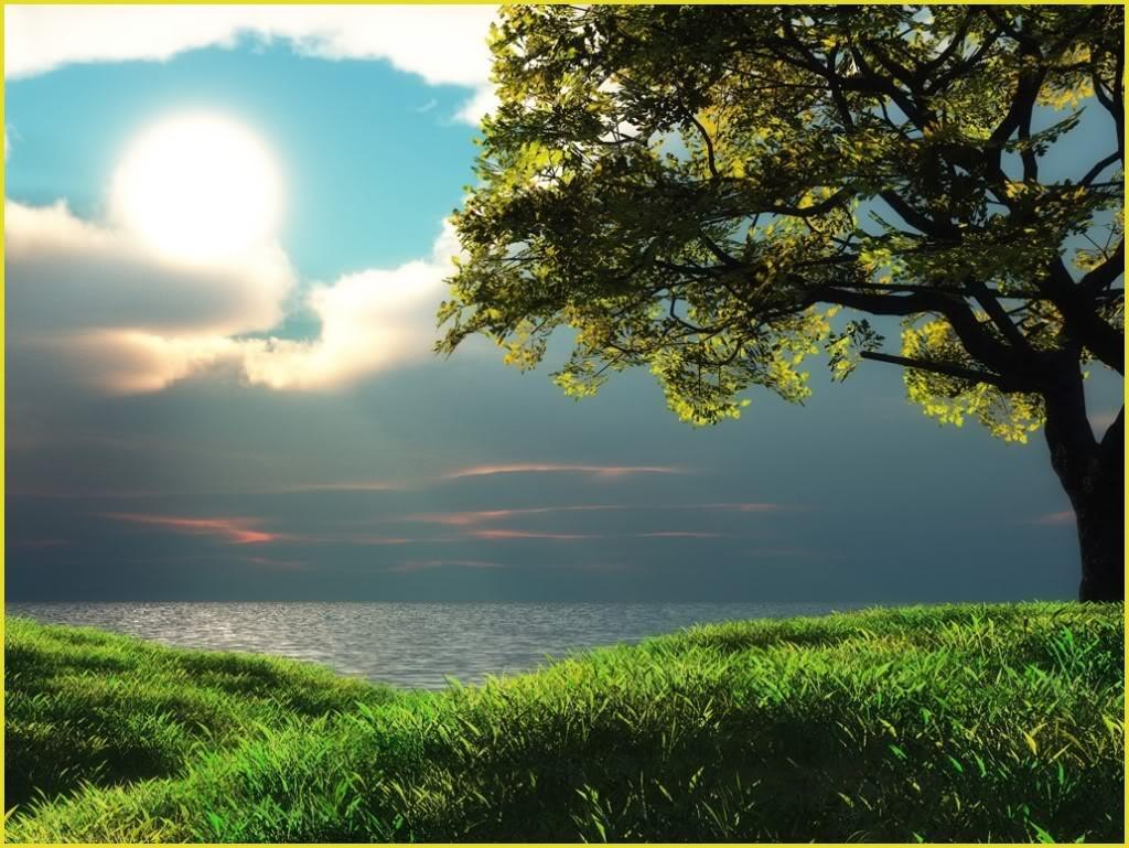 Grass-Tree-Landscape-Clouds-Sun-Sky-Lake-Nature-Luonto-Download-Sky-Grass-Tree-Landscape-wallpaper-wp3606332