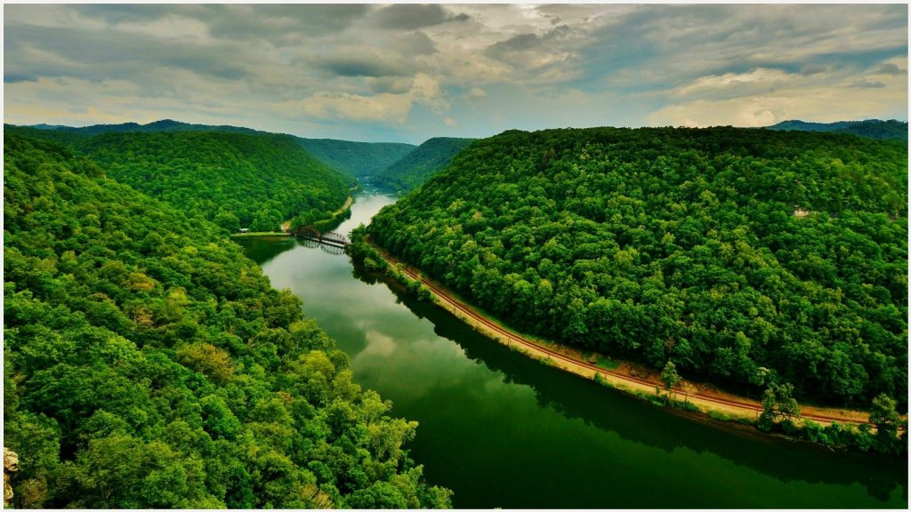 Green-Forest-And-River-Landscape-green-forest-and-river-landscape-1080p-green-wallpaper-wp3806080