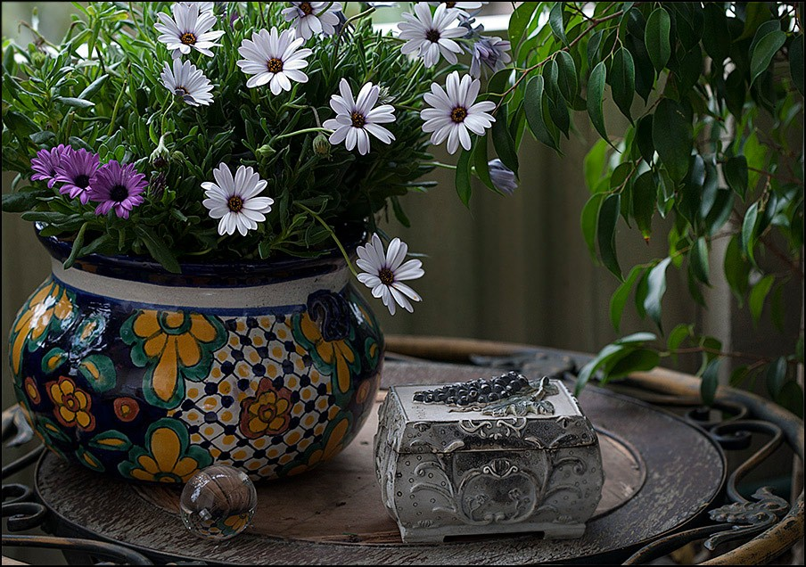 Green-Pretty-Daisy-Life-Nature-Photography-Vase-Flowers-Still-Colors-Beautiful-Daisies-Table-Flower-wallpaper-wp3606395