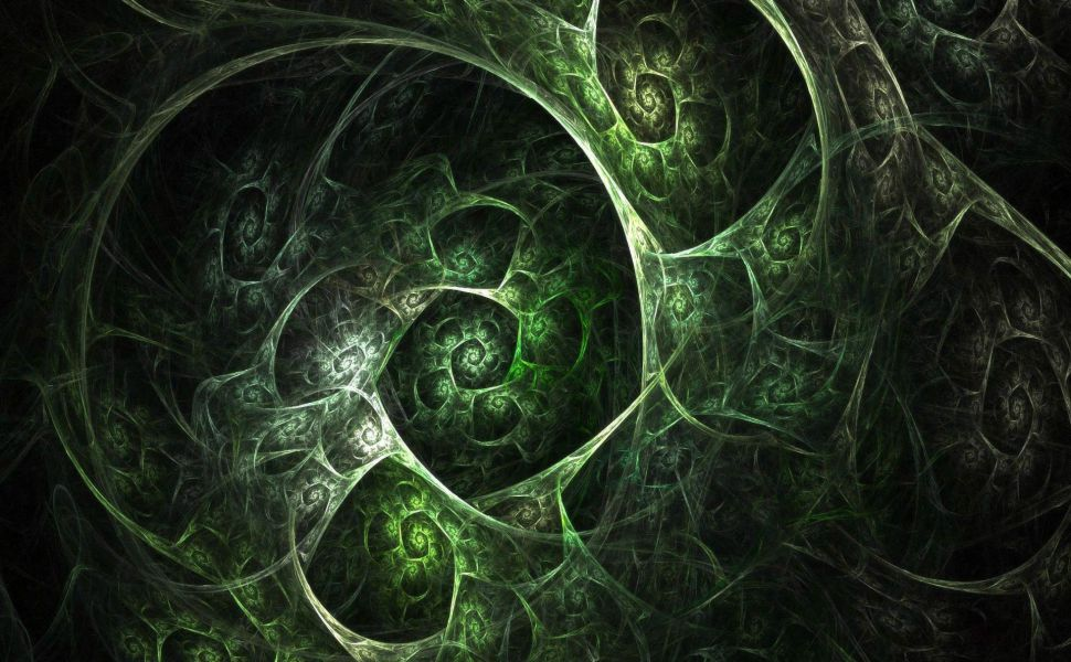 Green-fractal-shells-HD-wallpaper-wp3806083
