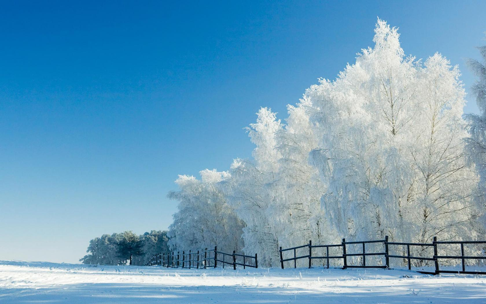 HU-Snow-Snow-HD-Pics-Free-Large-Images-wallpaper-wpc900243