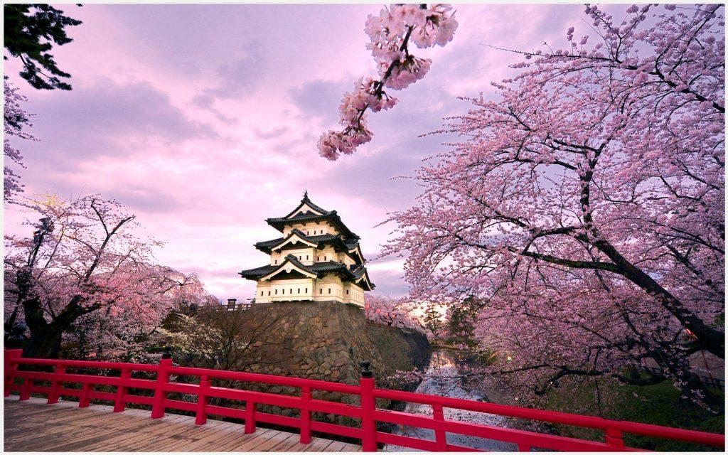Hirosaki-Castle-Japan-hirosaki-castle-japan-1080p-hirosaki-castle-japan-wallp-wallpaper-wp3606882-1