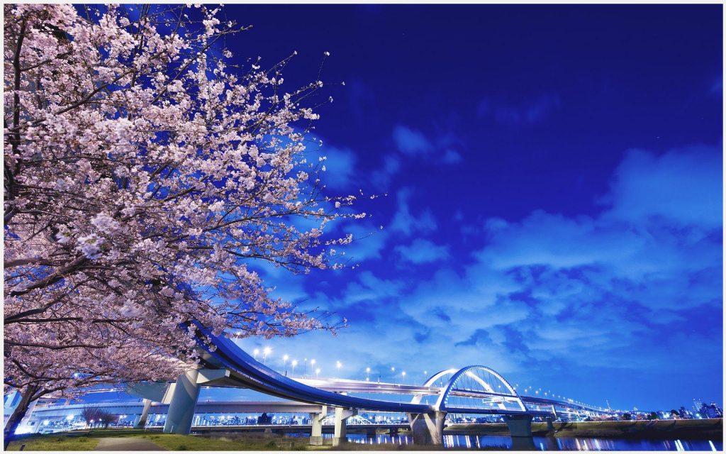 Japan-Bridge-Scenery-japan-bridge-scenery-1080p-japan-bridge-scenery-wallpape-wallpaper-wp3607528-1