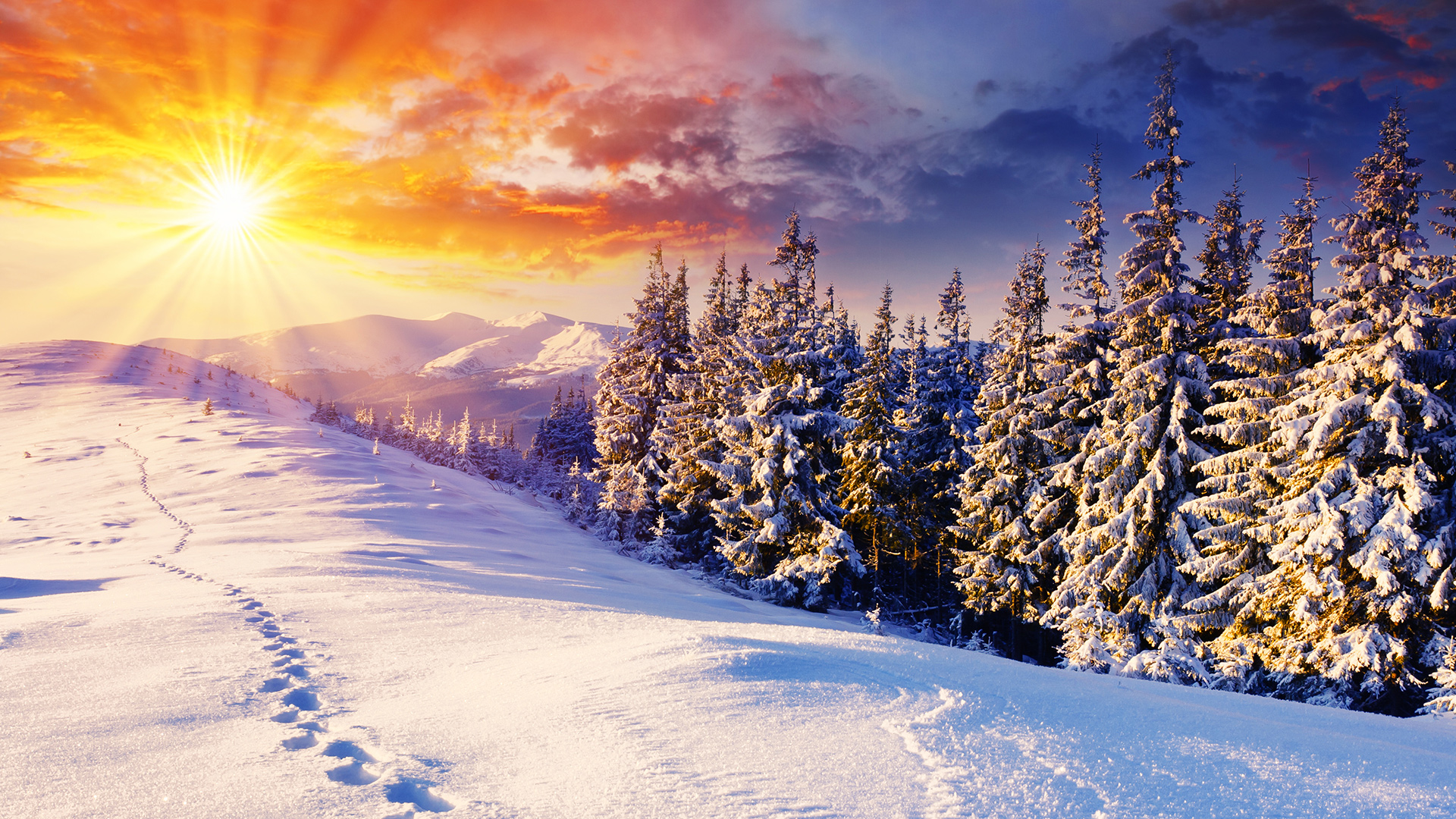 Winter-Get-Free-top-quality-Winter-for-your-desktop-PC-background-ios-or-an-wallpaper-wpc90010720