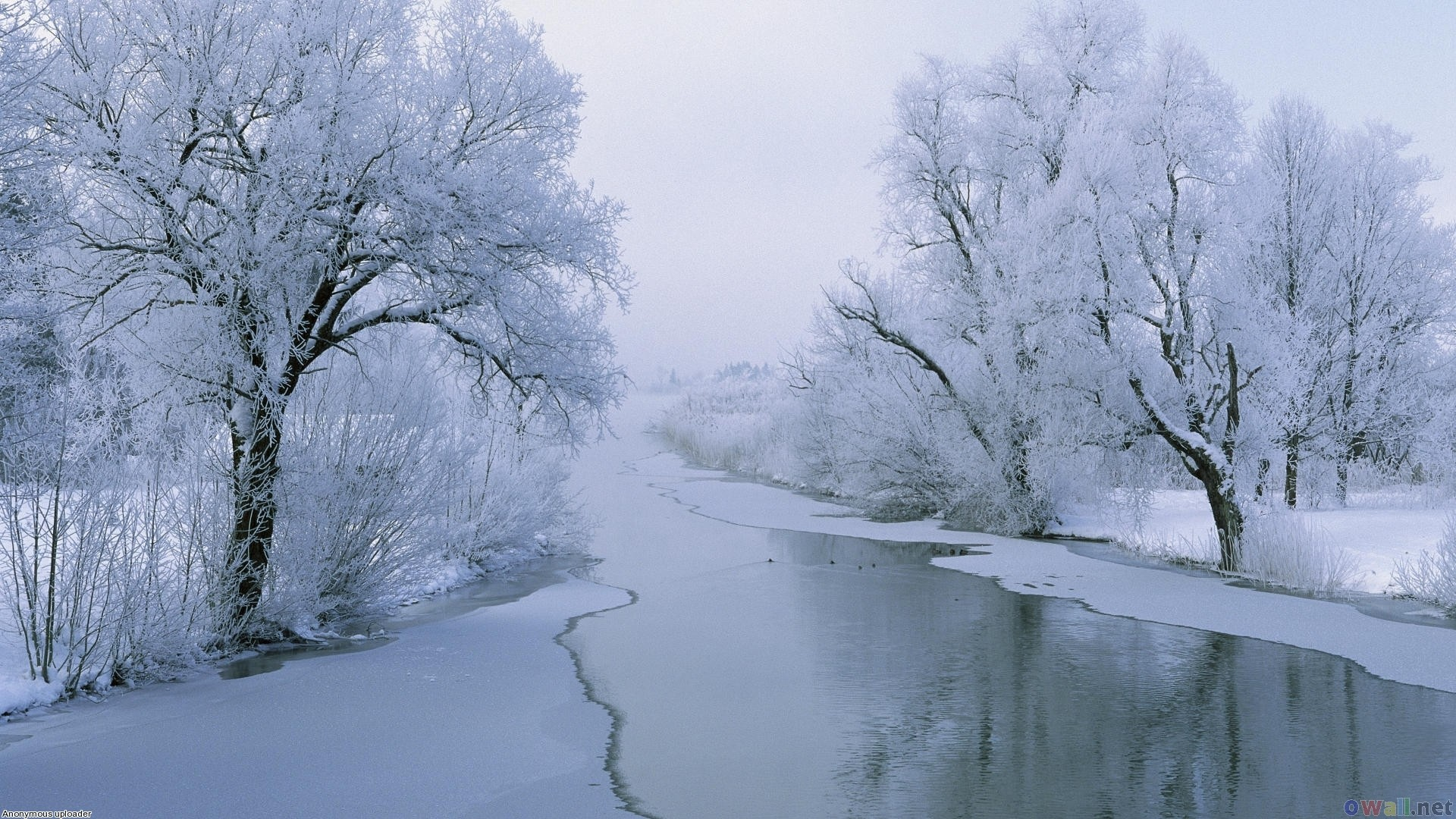 Winter-HD-Desktop-Backgrounds-Images-and-Pictures-wallpaper-wpc90010722