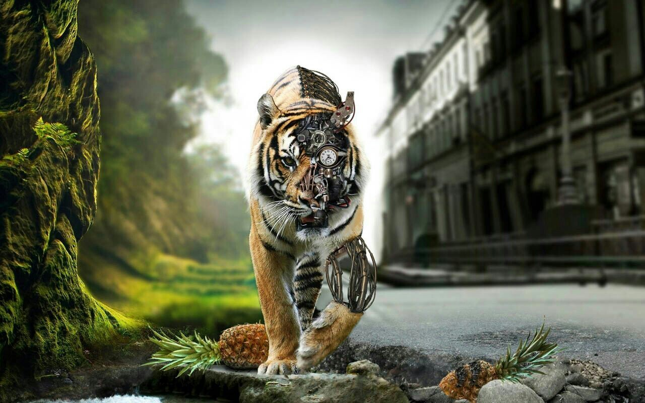 adfffe3daaf-mythology-tiger-wallpaper-wpc9001365
