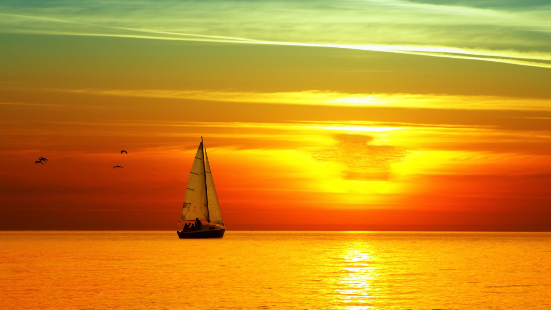 beaches-sailing-amber-brightness-multicolor-awesome-navigating-sailboat-birds-paisage-photography-pa-wallpaper-wp3603061