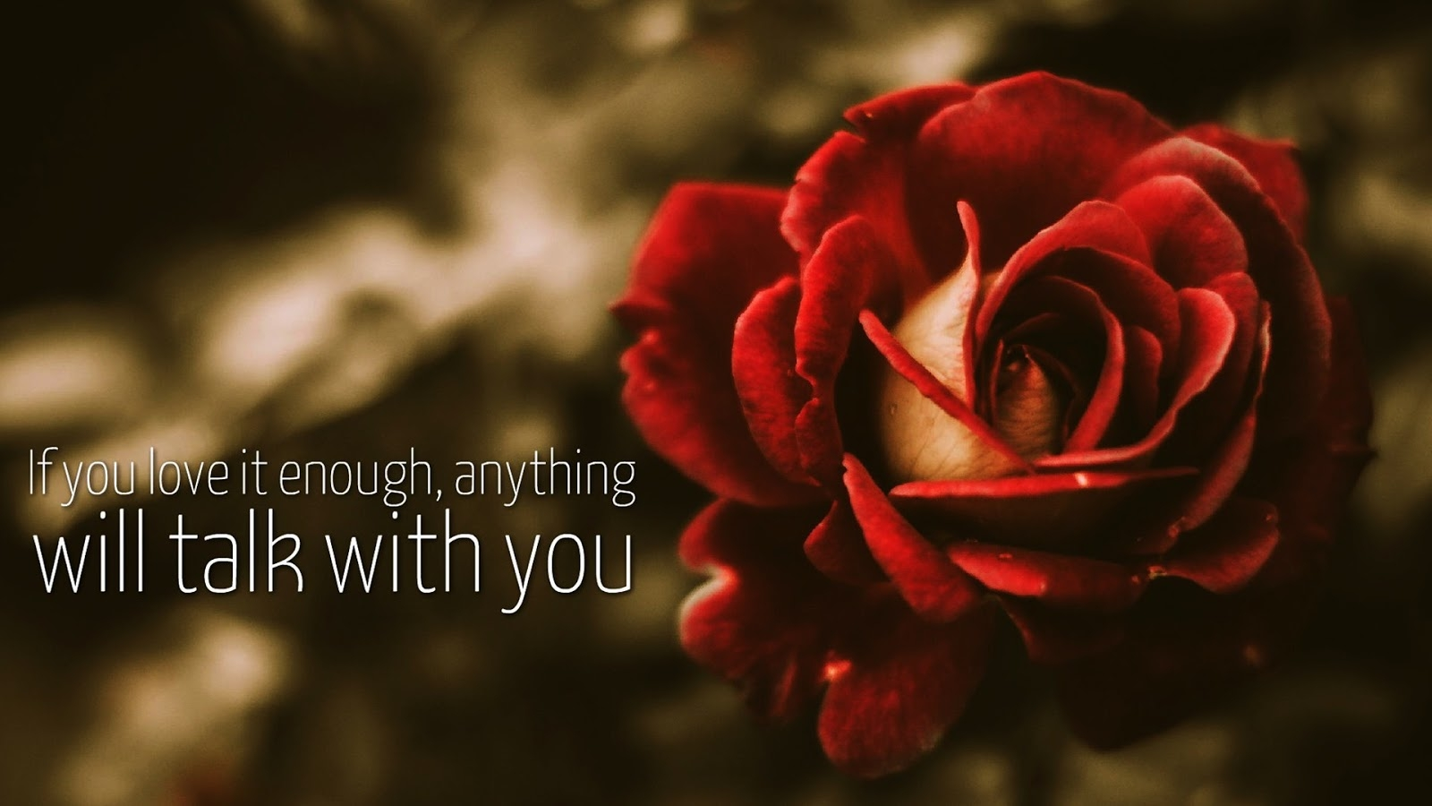 best-images-of-love-download-HD-Love-Images-With-Love-Quotes-Images-And-Love-Couple-Images-Best-wallpaper-wpc9002835