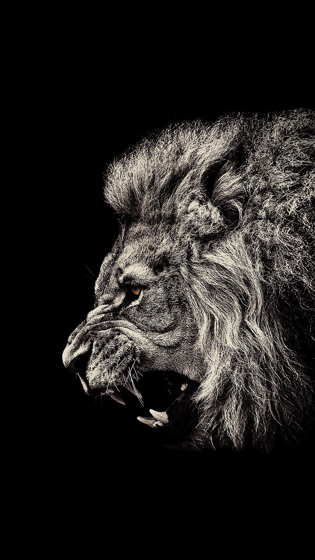 black-iphone-Lion-Black-Amoled-1080x1920-Need-iPhone-S-Plus-Background-for-IPhoneS-wallpap-wallpaper-wpc9203073