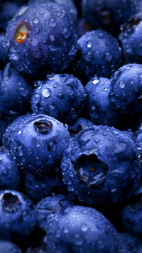 blueberries-an-HD-featuring-this-delicious-fruit-wallpaper-wpc58014