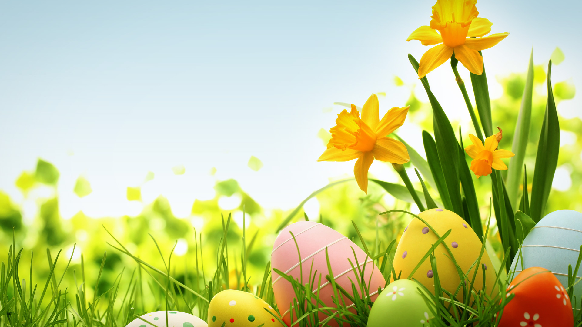 colorful-easter-eggs-wallpaper-wp3803907