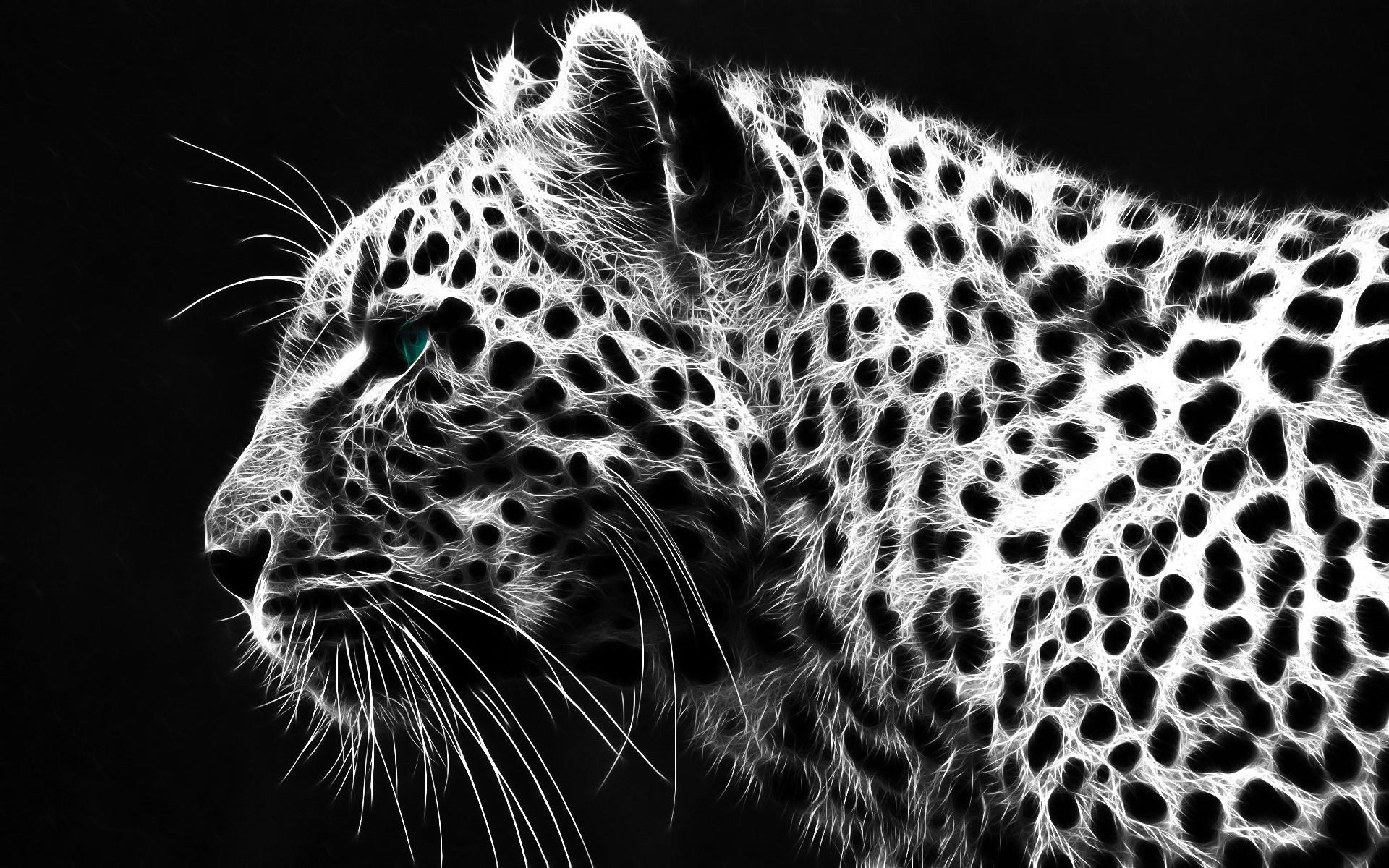 eefcbdc-cheetah-animal-wallpaper-wp3804971