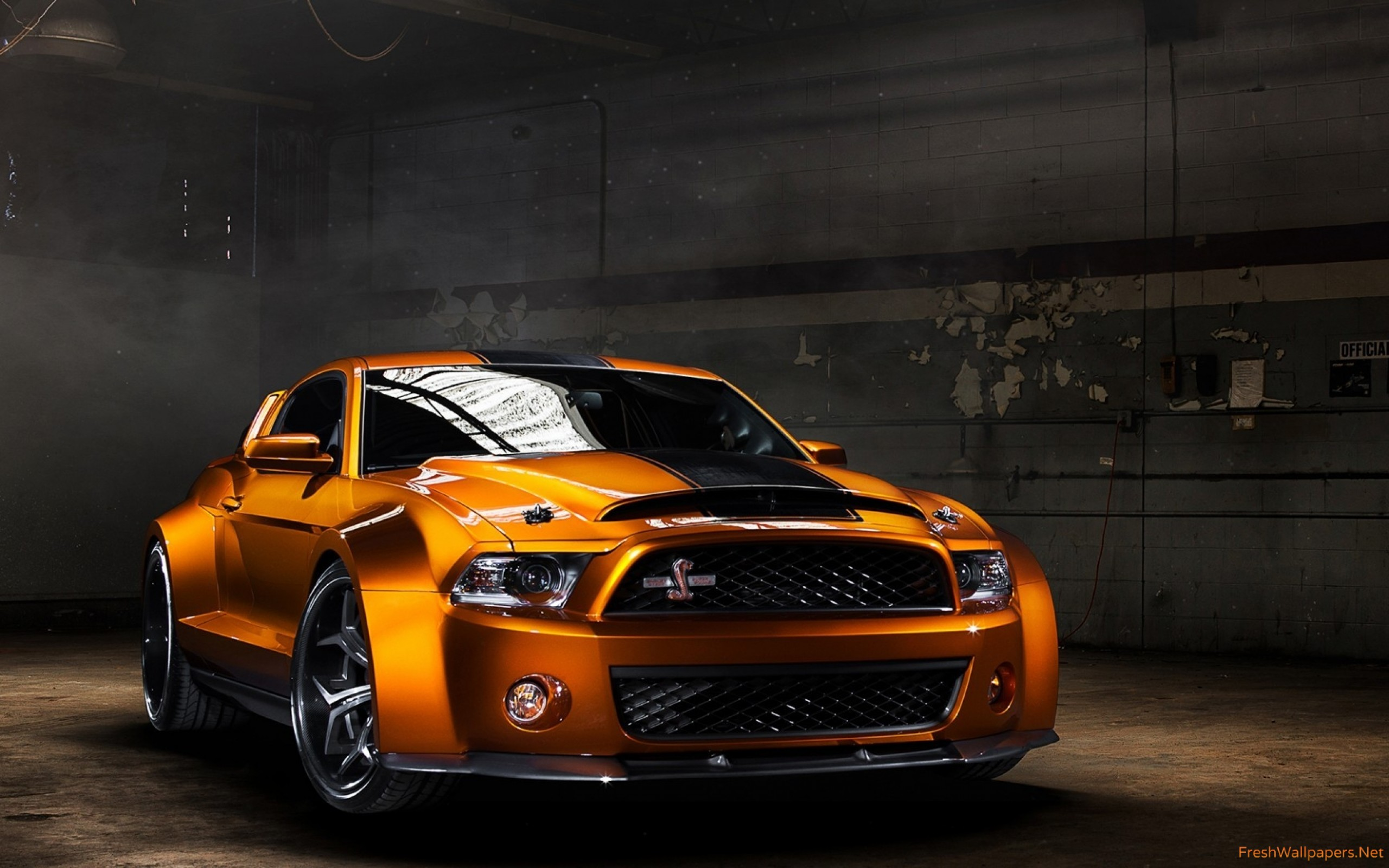 shelby-gt-super-snake-download-1920x1080-super-snake-wallpaper-wp38010140