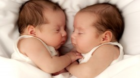 Cute Babies HD Wallpaper
