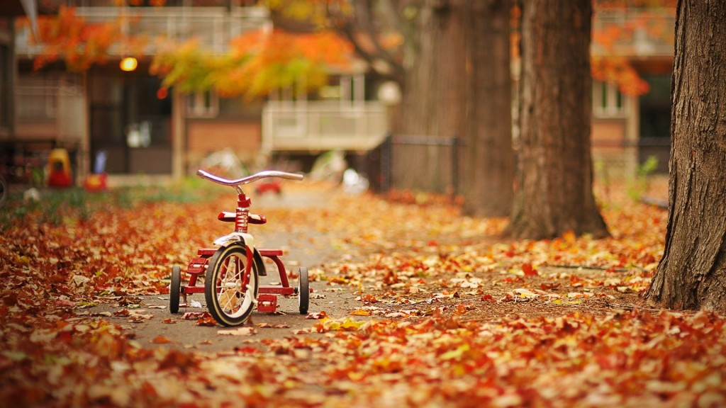 Autumn-wallpapers2-1024x576