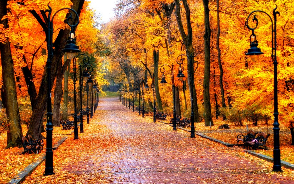 Autumn-wallpapers6-1024x640