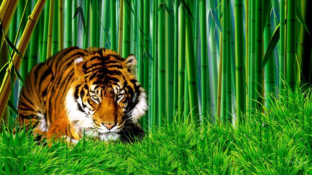 Bamboo-wallpaper-1024x576