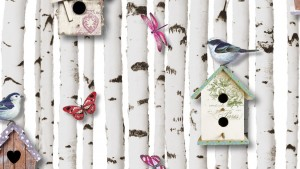 Birch tree wallpaper