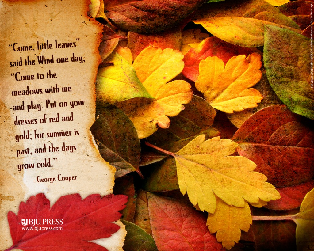 Fall-wallpapers3-1024x819
