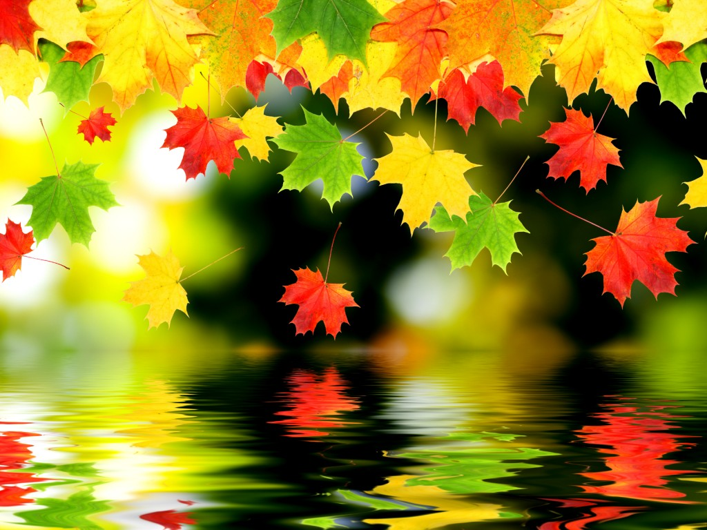 Fall-wallpapers4-1024x768