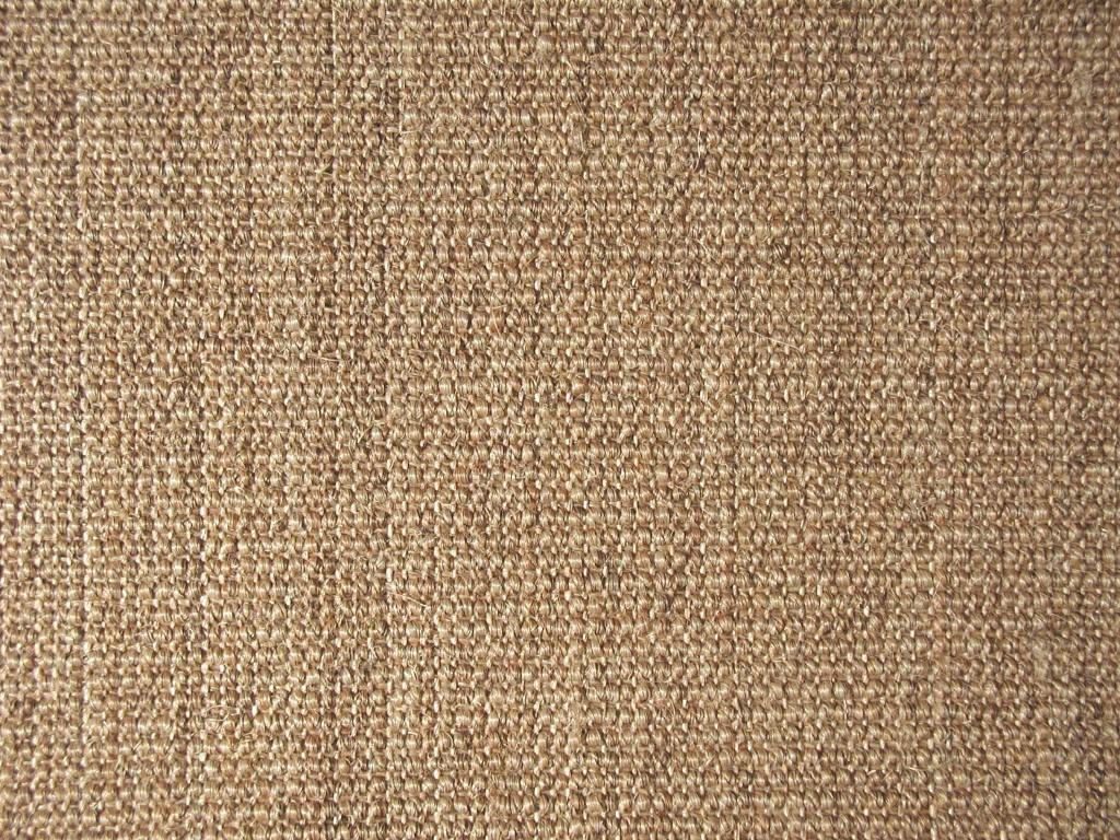 Seagrass-wallpaper5-1024x768