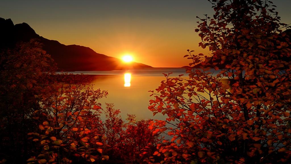 Sunrise-wallpaper2-1024x576
