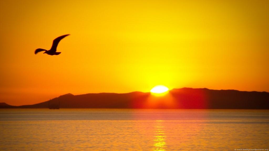 Sunrise-wallpaper5-1024x576
