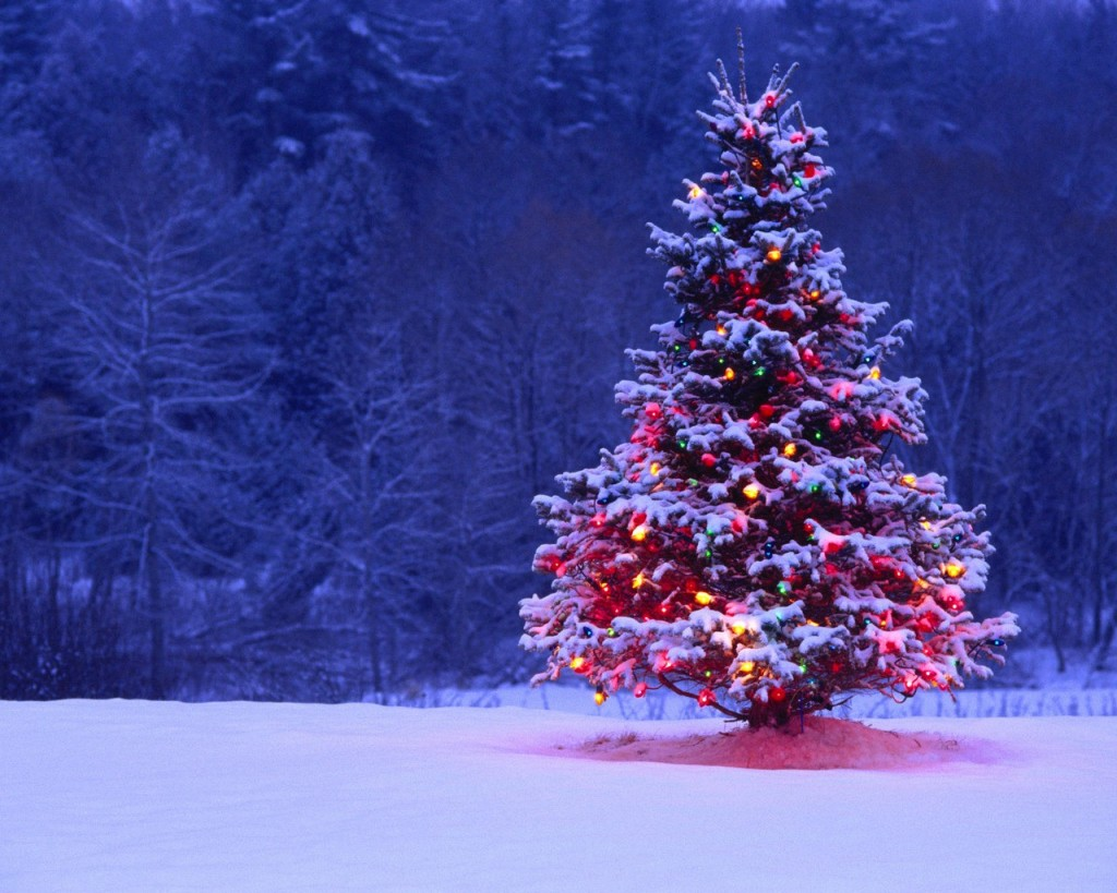 christmas-tree-wallpaper-3-1024x819