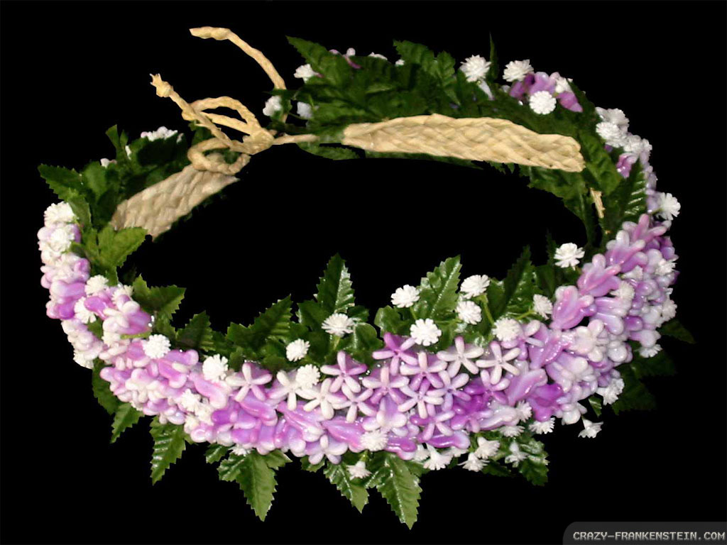 purple-flower-crown-wallpapers-1024x768