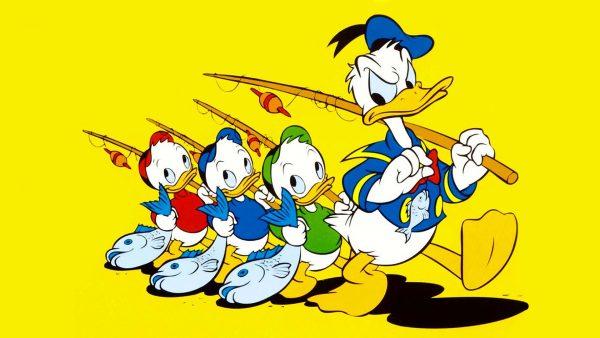 duck-wallpaper-HD7-1-600x338