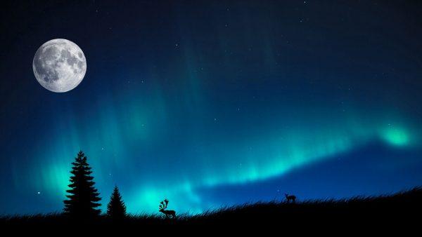 northern-lights-wallpaper-HD6-600x338