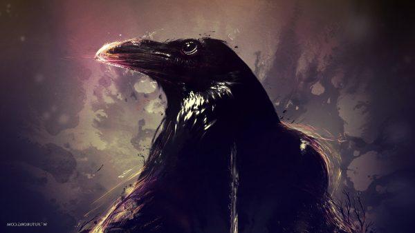 ravens-wallpaper-HD7-600x338