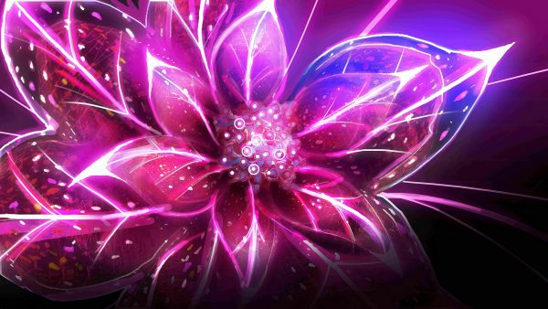 wallpapers-pink-HD10-600x338