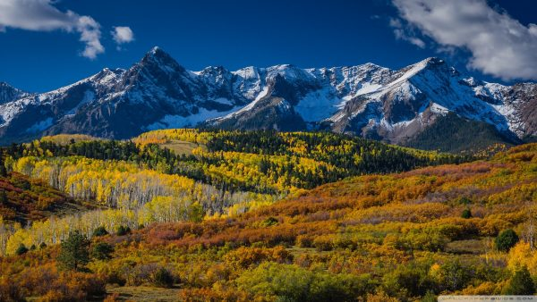 colorado-wallpaper2-600x338