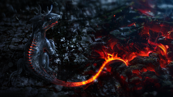 coolest-wallpapers9-600x338