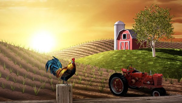 farm-wallpaper-HD3-1-600x338
