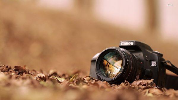 photography-wallpaper7-600x338