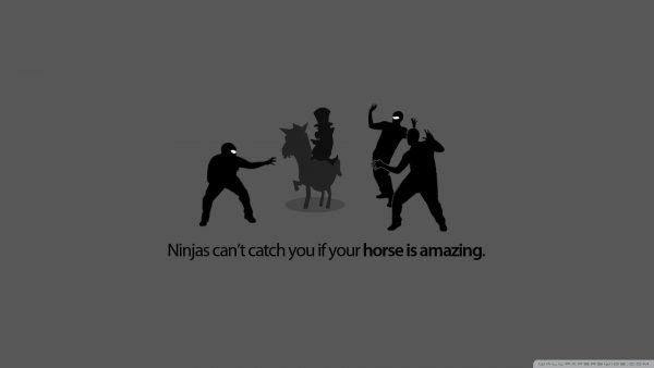 cool-funny-wallpapers-HD9-600x338