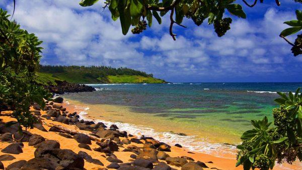 hawaii-wallpapers-HD8-600x338