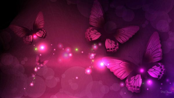 purple-and-pink-wallpaper-HD9-600x338