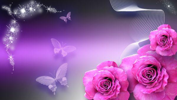 rose-iphone-wallpaper-HD2-600x338