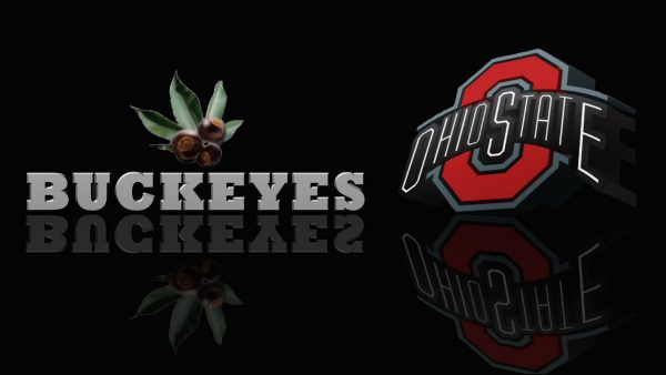 ohio-state-football-wallpaper9-600x338