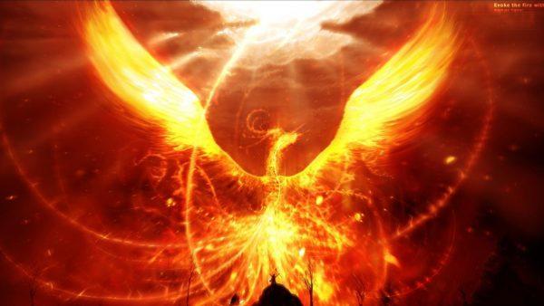 phoenix-wallpaper3-600x338