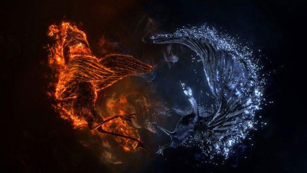 phoenix-wallpaper5-600x338