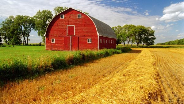 barn-wallpaper1-600x338