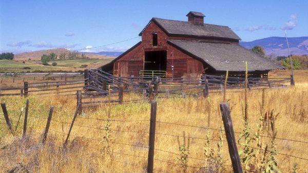 barn-wallpaper89-600x338