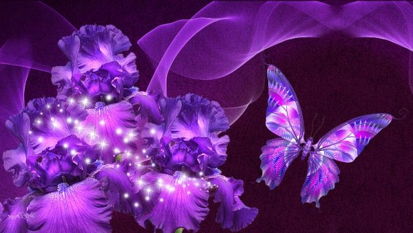 purple-butterfly-wallpaper9-600x338