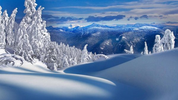 snow-desktop-wallpaper5-600x338