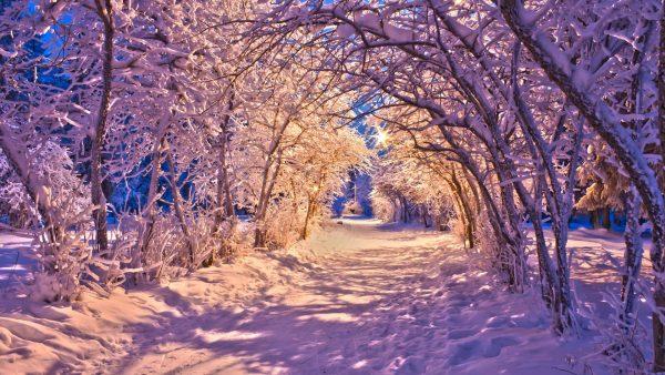 iphone-winter-wallpaper5-600x338